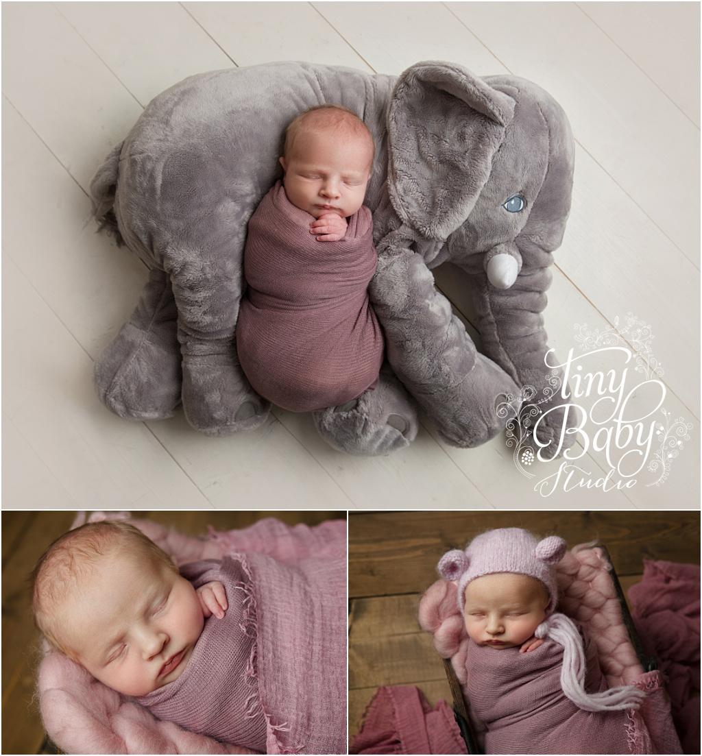 tiny-baby-studio-newcastle-newborn-baby-photographer-newborn-baby-girl-elephant