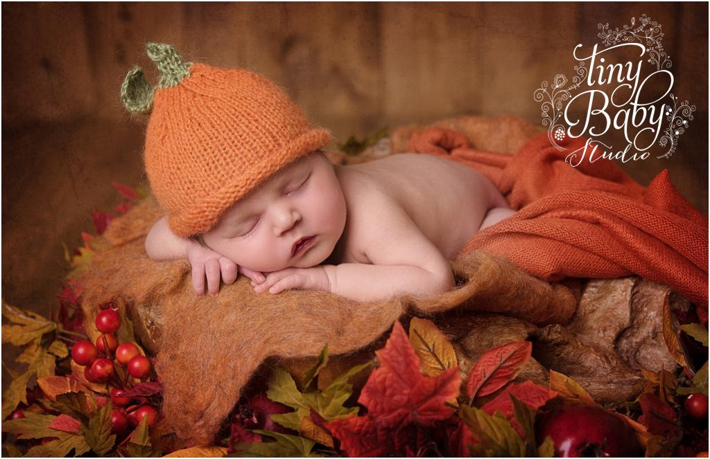 tiny-baby-studio-newcastle-newborn-photographer-autumnal-pumpkin