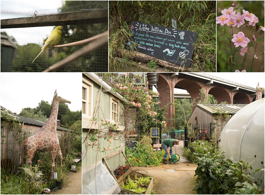 Tiny Baby Studio Newcastle Newborn Photography Ouseburn Farm Giraffe